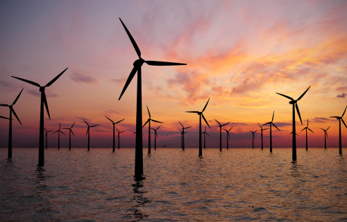Black turbines could benefit wildlife